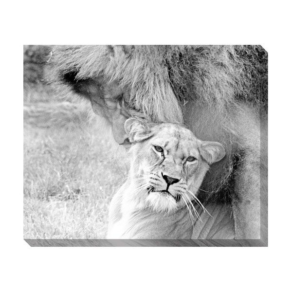 Gallery Direct Partners Oversized Gallery Wrapped Canvas