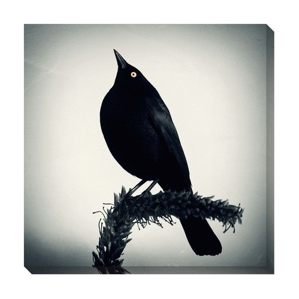 Gallery Direct Blackbird I Oversized Gallery Wrapped Canvas