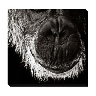Gallery Direct Wisdom Oversized Gallery Wrapped Canvas