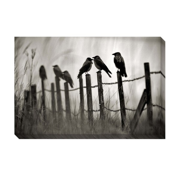 Gallery Direct Fence Birds Oversized Gallery Wrapped Canvas