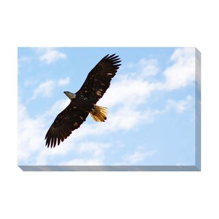 Gallery Direct Soaring High Oversized Gallery Wrapped Canvas
