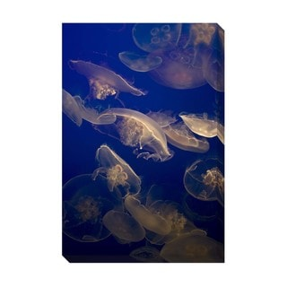 Gallery Direct Jellyfish Oversized Gallery Wrapped Canvas