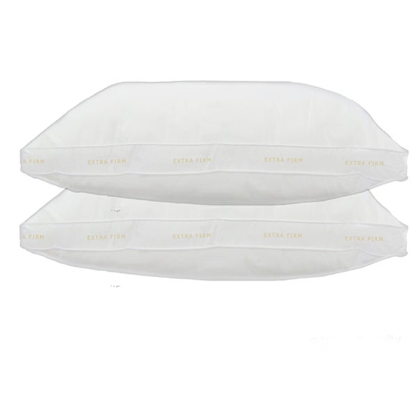 Home Accents Gusseted Extra Firm Standard-size Down Alternative Pillow (Set of 2)
