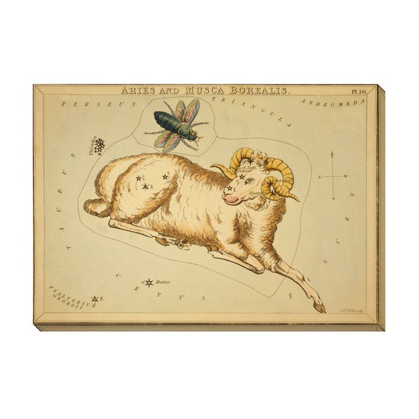 Gallery Direct Aries and Musca Borealis Oversized Gallery Wrapped Canvas