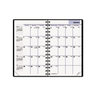 DayMinder 2013 Recycled Monthly Planner (3.75 x 6)