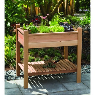 Phat Tommy Elevated Brown Planter Box