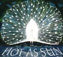 Hot As Sun - Night Time Sound Desire
