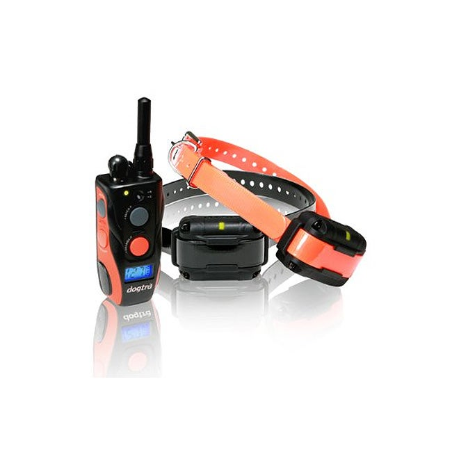 Dogtra Surestim 2 Dog Remote Trainer with LCD Display