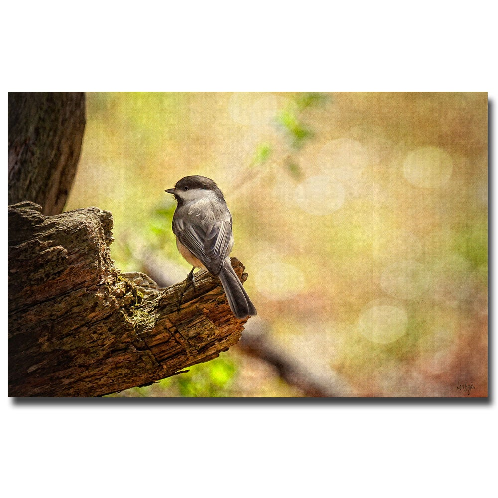 Lois Bryan 'Until Spring' Canvas Art