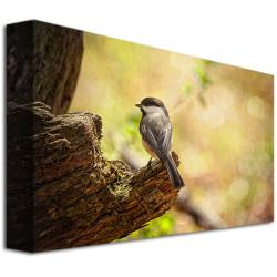 Lois Bryan 'Until Spring' Canvas Art - Thumbnail 1