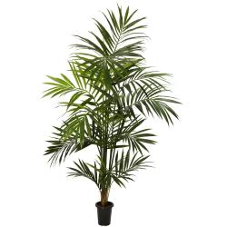 7 ft Kentia Palm Silk Tree