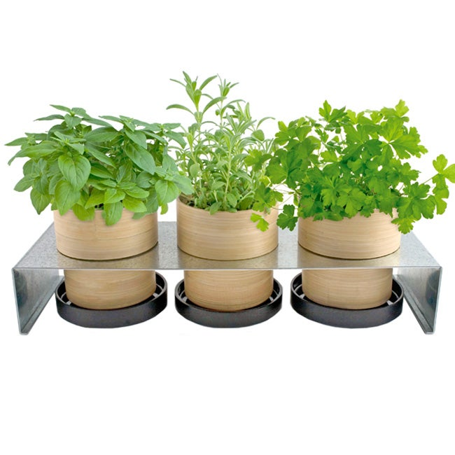 Bamboo Grow Pot Rack