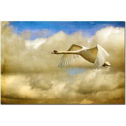 Lois Bryan 'Swan Song' Canvas Art
