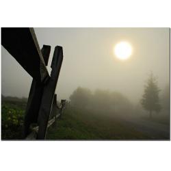 Lois Bryan 'Foggy Morning' Canvas Art
