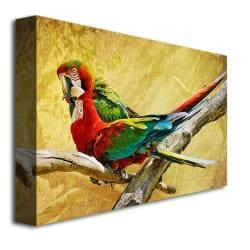 Lois Bryan 'Kissing Macaws' Canvas Art - Thumbnail 1