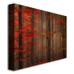 Philippe Sainte-Laudy 'Enchanting Red' Canvas Art - Thumbnail 1