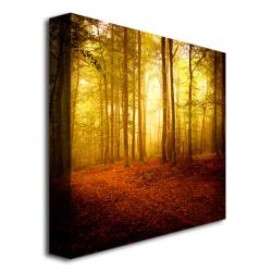Philippe Sainte-Laudy 'The Smell of Autumn' Canvas Art