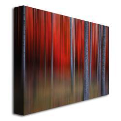 Philippe Sainte-Laudy 'Gimick' Canvas Art - Thumbnail 1
