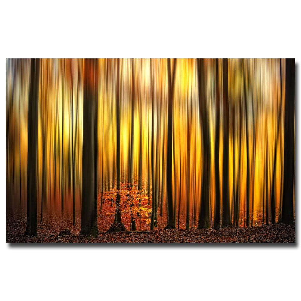 Philippe Sainte-Laudy 'Firewall' Canvas Art