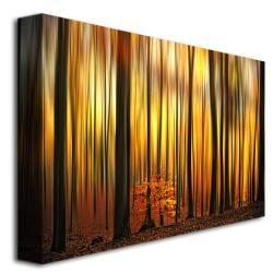 Philippe Sainte-Laudy 'Firewall' Canvas Art - Thumbnail 1