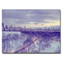 Ariane Moshayedi 'Snowy Wonderland' Horizontal Canvas Art