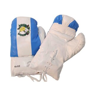 Defender 16oz Guatemala Flag Boxing Gloves