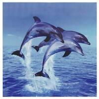 Three Rising Dolphins Canvas Wall Art