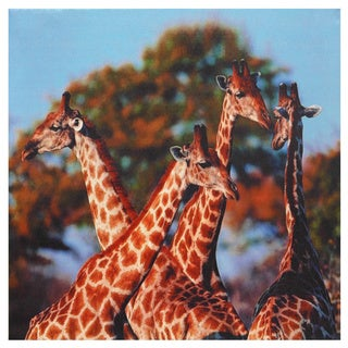 Four Prairie Giraffes Canvas Wall Art