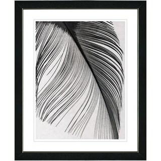 Studio Works Modern 'Feather' Framed Print