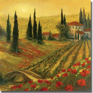 Art Fronckowiak 'Poppies of Toscano' Canvas Art