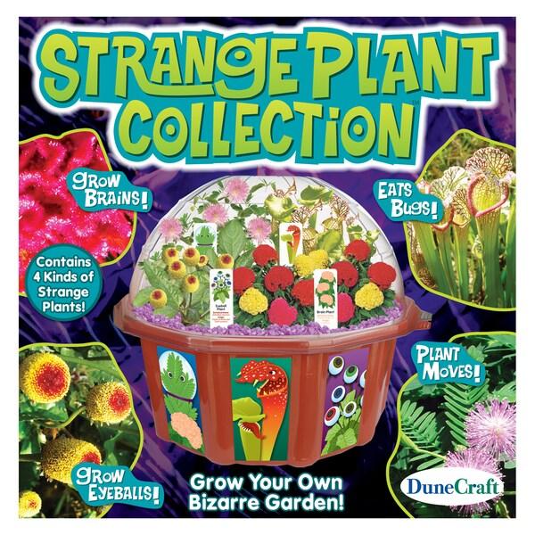 Strange Plant Collection