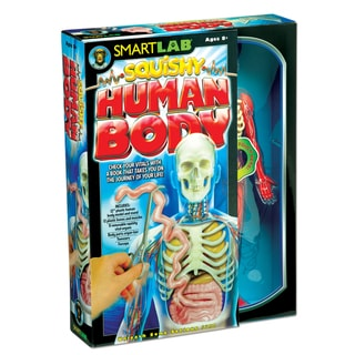 Smart Lab Squishy Human Body