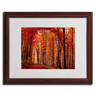 Philippe Sainte-Laudy 'The Red Way' Framed Matted Canvas Art