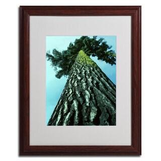 Kurt Shafer 'A Tree of Life' Framed Matted Wall Art