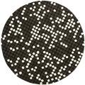 Safavieh Handmade Soho Dots Black New Zealand Wool Rug - 6' x 6' Round