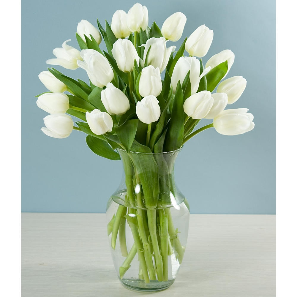 (Mother's Day Preorder) 20 White Tulips with Vase - Free ...