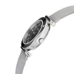Skagen Women's Stainless Steel Mesh Watch