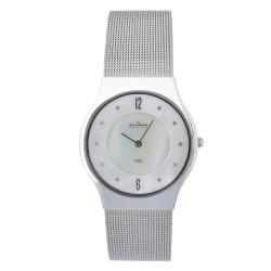 Skagen Men's Stainless Steel Mesh Watch with Silvertone Hands