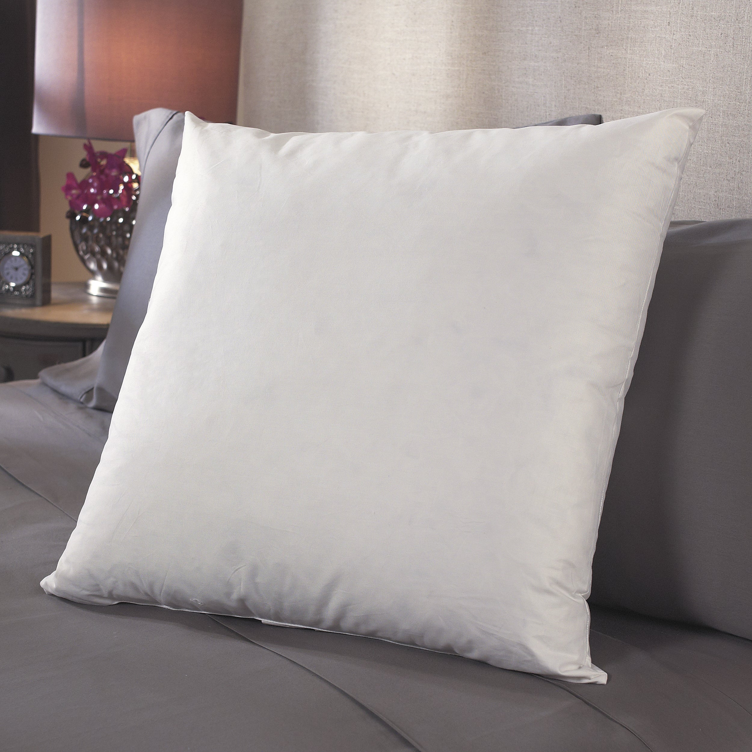 Luxury White Goose Decorative/ Accent Pillow Inserts (Set of 2)