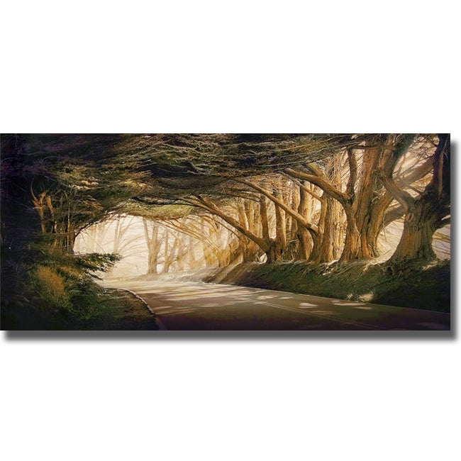 William Vanscoy 'Inside a Dream' Canvas Art