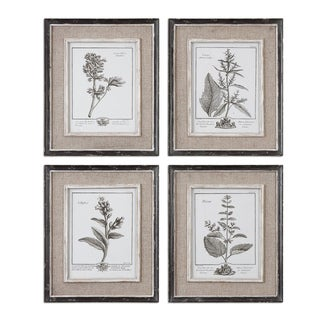 Uttermost Casual Grey Study Framed Art (Set of 4) - White