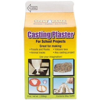 Casting Plaster 8 Ounces