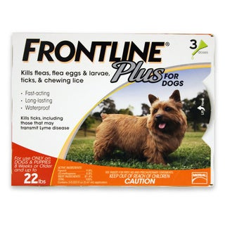 Frontline Plus Orange for Dogs Up to 22 Pounds (3-month Treatment)