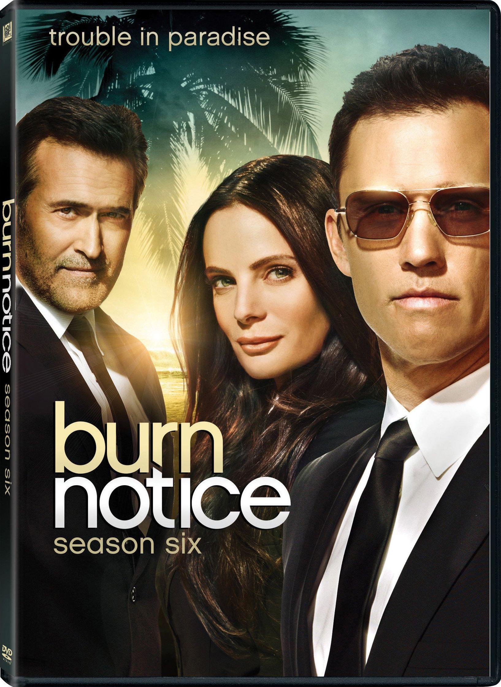 Burn Notice: Season 6 (DVD)