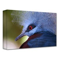 Dan Holm 'Red Eye' Gallery-Wrapped Canvas - Multi