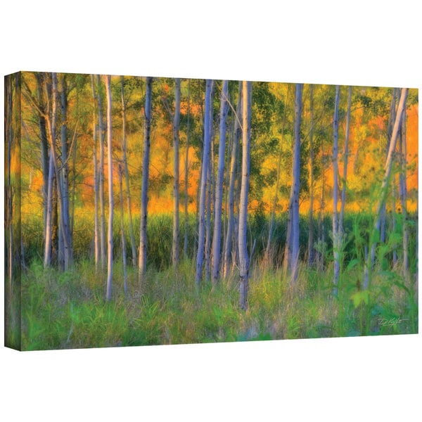 Antonio Raggio 'Stumpy Basin' Gallery-Wrapped Canvas