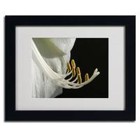 Kurt Shaffer 'Intimate Amaryllis' Framed Matted Art