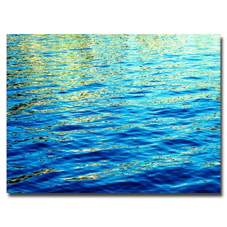 Ariane Moshayedi 'Ripples' Canvas Art