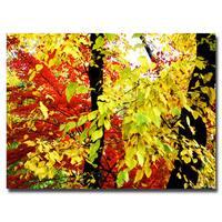 Ariane Moshayedi 'Foliage' Canvas Art - Multi
