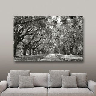 Link to ArtWall Steve Ainsworth 'Live Oak Avenue' Gallery Wrapped Canvas Similar Items in Canvas Art